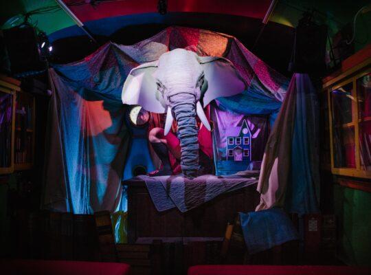 tete elephant